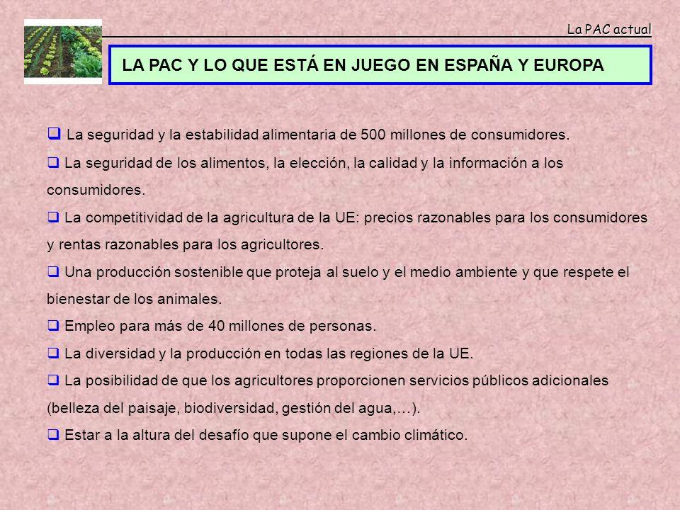 La PAC actual La PAC actual LA PAC Y LO QUE ESTÁ EN JUEGO EN ESPAÑA Y EUROPA La seguridad y la estabilidad alimentaria de 500 millones de consumidores