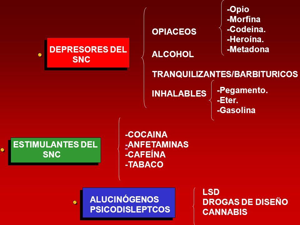 DEPRESORES DEL SNC OPIACEOS -Opio -Morfina -Codeina. -Heroína. -Metadona ALCOHOL INHALABLES -Pegamento. -Eter. -Gasolina TRANQUILIZANTES/BARBITURICOS