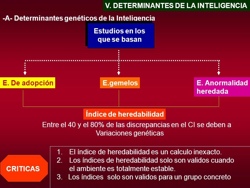 V. DETERMINANTES DE LA INTELIGENCIA -A- Determinantes genéticos de la Inteligencia Estudios en los que se basan E. De adopciónE.gemelosE. Anormalidad
