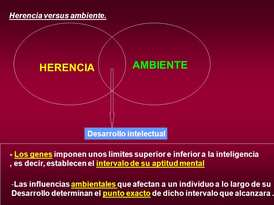 Herencia versus ambiente. HERENCIA AMBIENTE - Los genes imponen unos limites superior e inferior a la inteligencia, es decir, establecen el intervalo