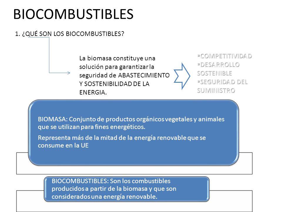 BIOCOMBUSTIBLES 5.