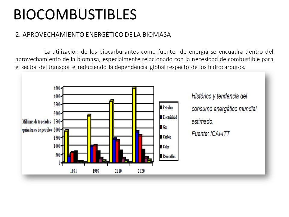 BIOCOMBUSTIBLES El uso energético de la biomasa tiene una fuerte tradición en los países en desarrollo, ya que no necesita un elevado nivel tecnológico.
