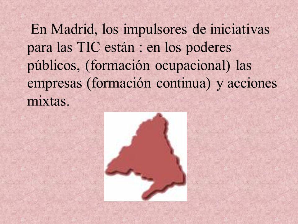En Madrid, los impulsores de iniciativas para las TIC están : en los poderes públicos, (formación ocupacional) las empresas (formación continua) y acciones mixtas.