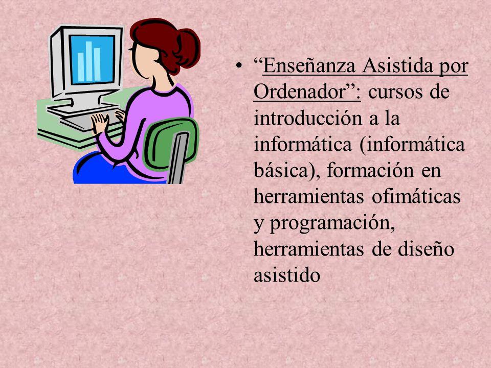 Enseñanza Asistida por Ordenador: cursos de introducción a la informática (informática básica), formación en herramientas ofimáticas y programación, herramientas de diseño asistido