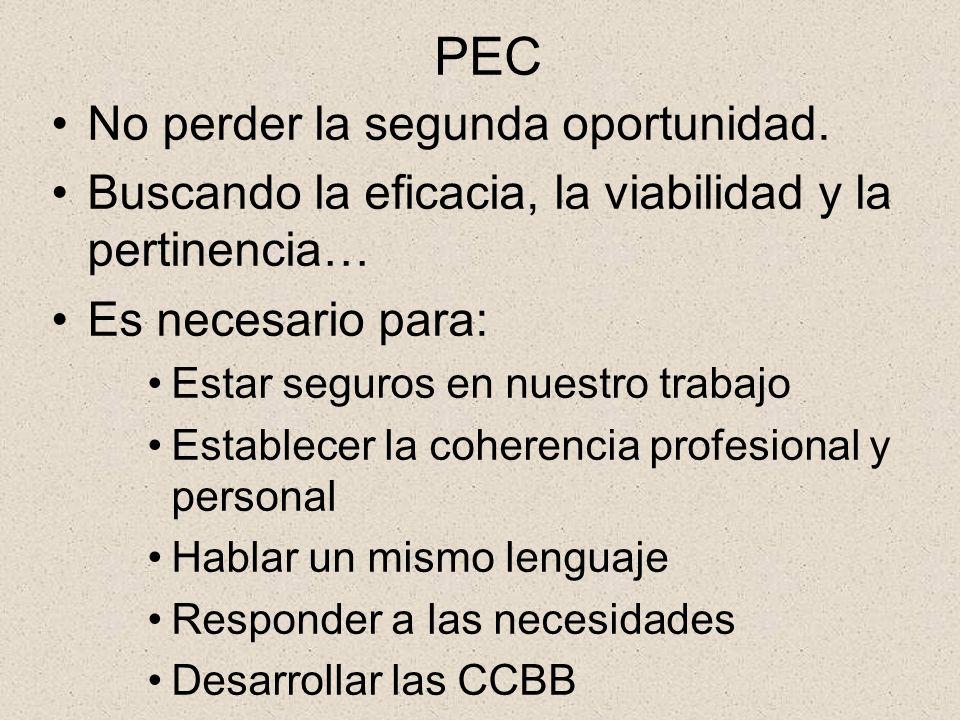 COMPETENCIASBÁSICASCOMPETENCIASBÁSICAS PROYECTO EDUCATIVOPGA Concreción y priorización de los objetivos generales del Centro y de los valores según el análisis de sus necesidades y realidades.