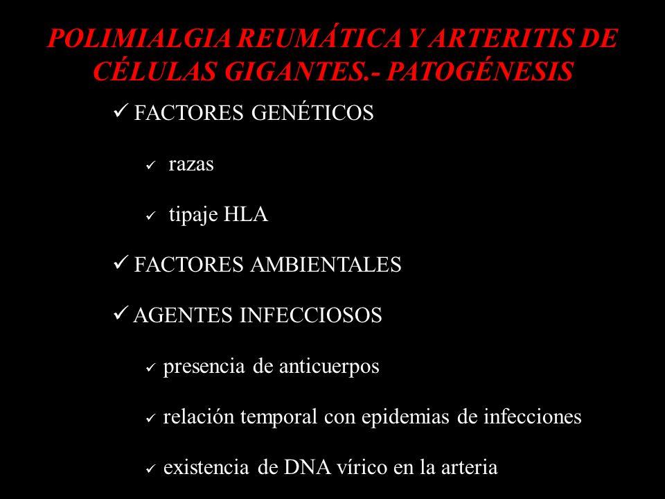 d POLIMIALGIA REUMÁTICA Y ARTERITIS DE CÉLULAS GIGANTES.- PATOGÉNESIS d FACTORES GENÉTICOS razas tipaje HLA FACTORES AMBIENTALES AGENTES INFECCIOSOS p