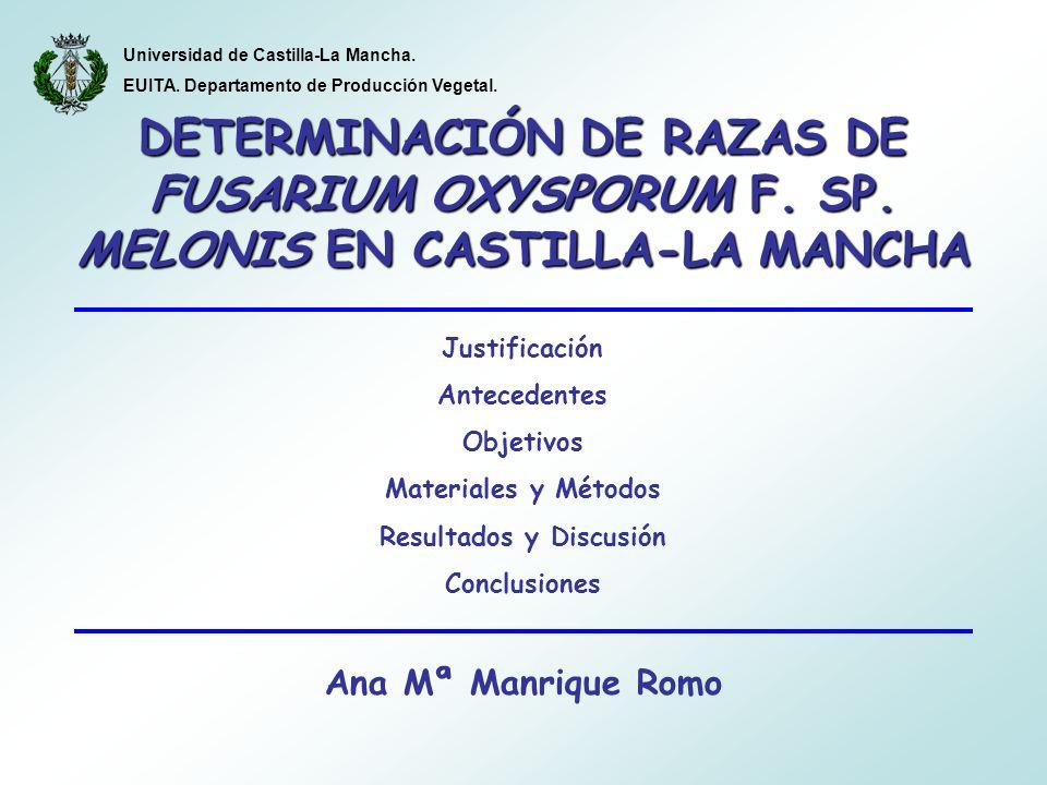 Justificación Antecedentes Objetivos Materiales y Métodos Resultados y Discusión Conclusiones Ana Mª Manrique Romo DETERMINACIÓN DE RAZAS DE FUSARIUM