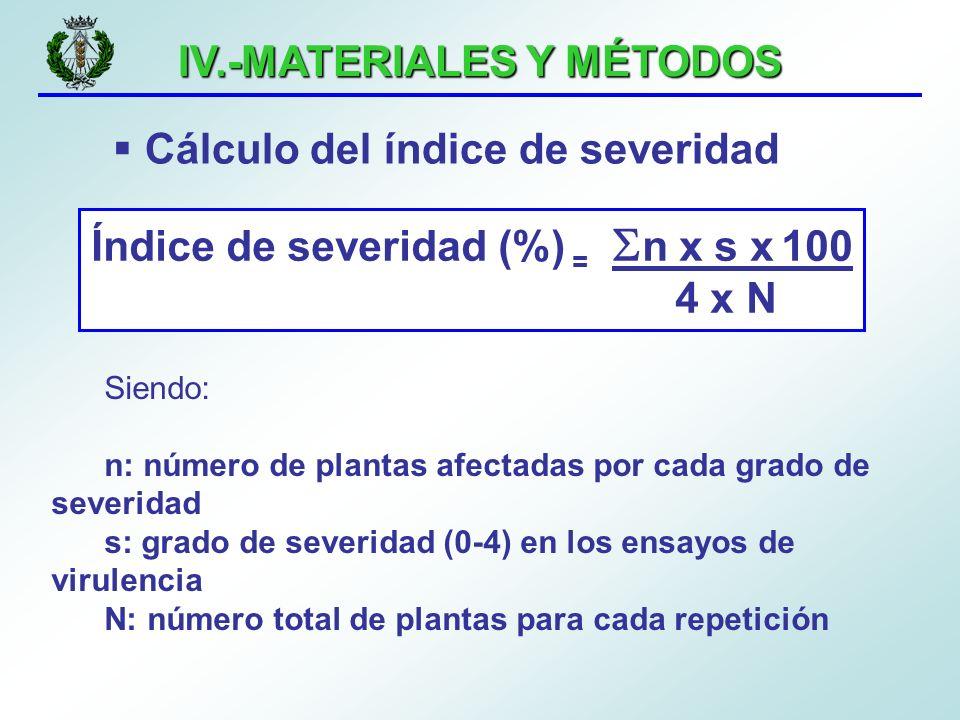 IV.-MATERIALES Y MÉTODOS Cálculo del índice de severidad Siendo: n: número de plantas afectadas por cada grado de severidad s: grado de severidad (0-4