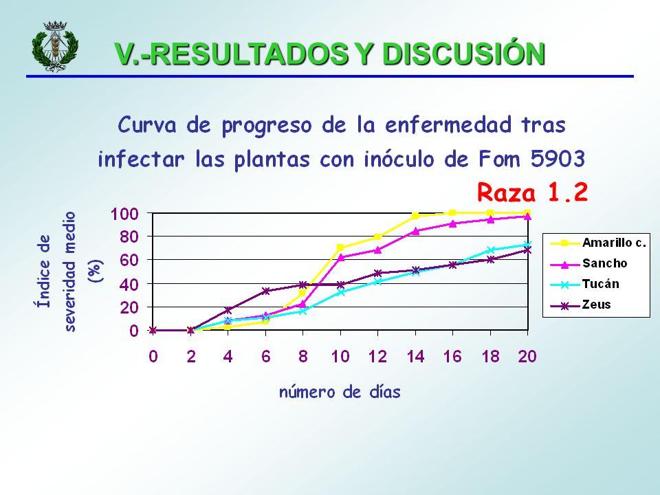 V.-RESULTADOS Y DISCUSIÓN Raza 1.2