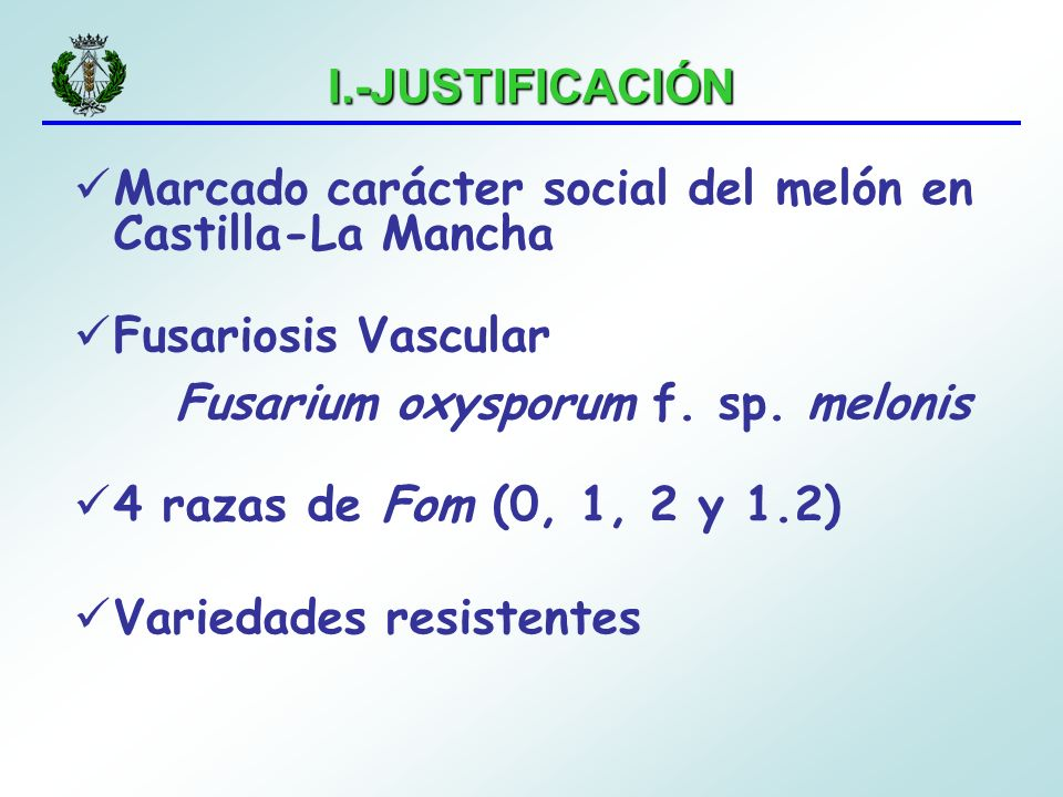 I.-JUSTIFICACIÓN Marcado carácter social del melón en Castilla-La Mancha Fusariosis Vascular Fusarium oxysporum f. sp. melonis 4 razas de Fom (0, 1, 2