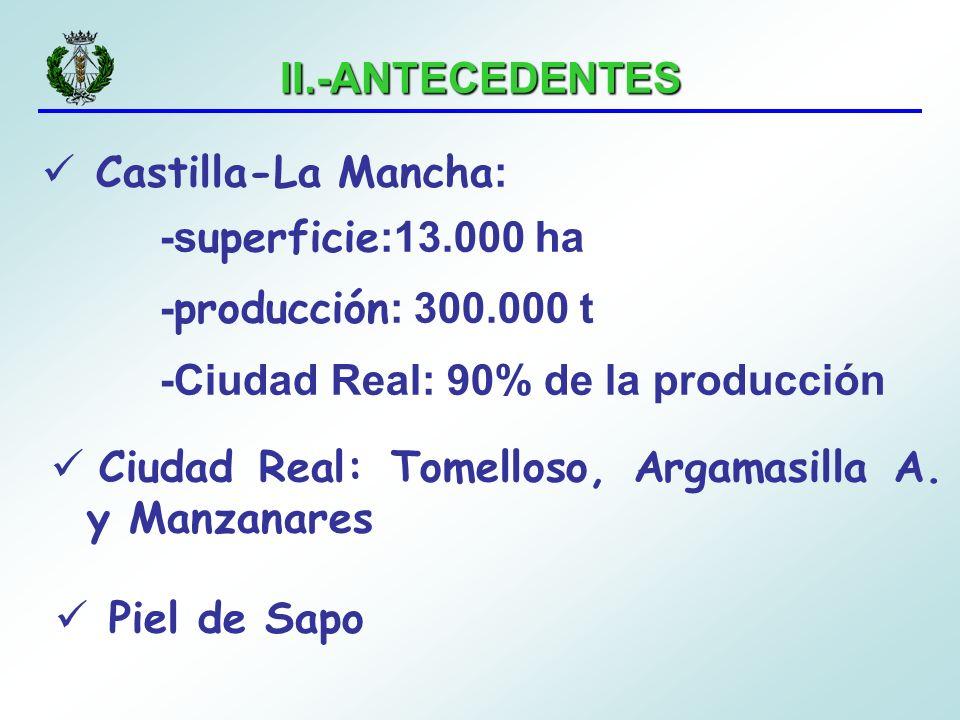 II.-ANTECEDENTES Castilla-La Mancha : -s uperficie :13.000 ha - producción : 300.000 t -Ciudad Real: 90% de la producción Ciudad Real: Tomelloso, Arga
