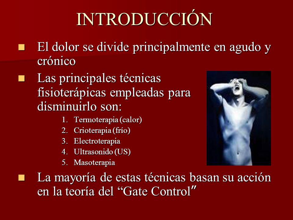 INTRODUCCIÓN El dolor se divide principalmente en agudo y crónico El dolor se divide principalmente en agudo y crónico Las principales técnicas fisiot