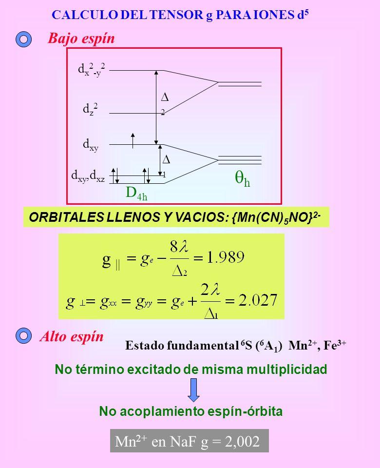 CALCULO DEL TENSOR g PARA IONES d 5 ORBITALES LLENOS Y VACIOS: {Mn(CN) 5 NO} 2- g || dz2dz2 d xy d xy,d xz d x 2 -y 2 2 1 h D 4h Bajo espín Alto espín