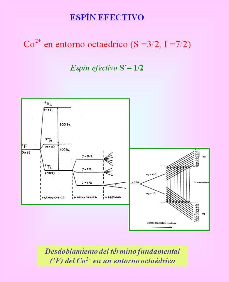 Desdoblamiento del término fundamental ( 4 F) del Co 2+ en un entorno octaédrico