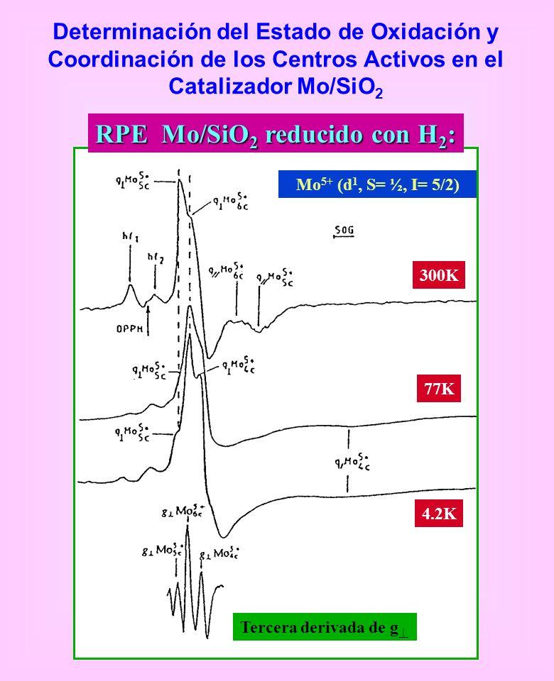 Determinación del Estado de Oxidación y Coordinación de los Centros Activos en el Catalizador Mo/SiO 2 300K 77K 4.2K Tercera derivada de g Mo 5+ (d 1,