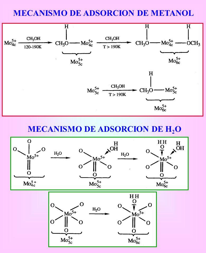 MECANISMO DE ADSORCION DE METANOL MECANISMO DE ADSORCION DE H 2 O