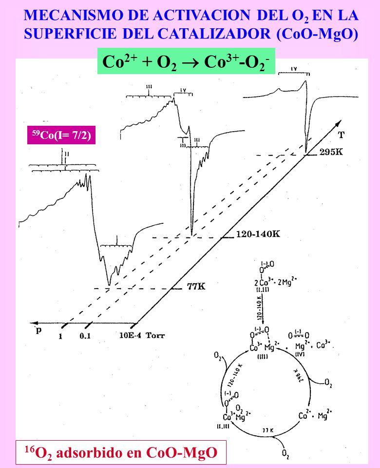 MECANISMO DE ACTIVACION DEL O 2 EN LA SUPERFICIE DEL CATALIZADOR (CoO-MgO) 16 O 2 adsorbido en CoO-MgO Co 2+ + O 2 Co 3+ -O 2 - 59 Co(I= 7/2)