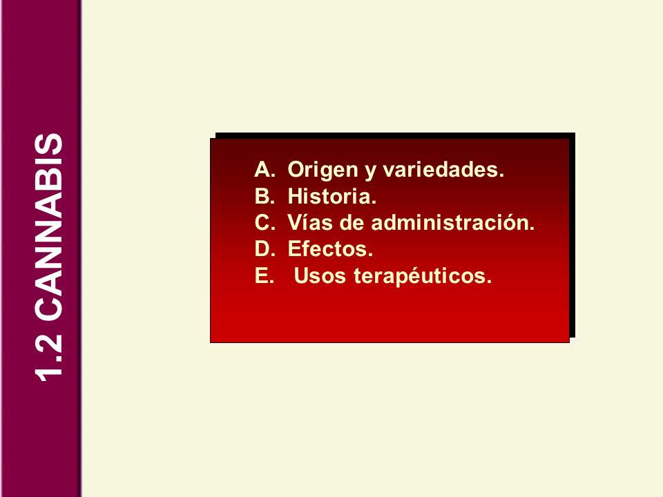 1.2 CANNABIS A.Origen y variedades. B.Historia. C.Vías de administración. D.Efectos. E. Usos terapéuticos.