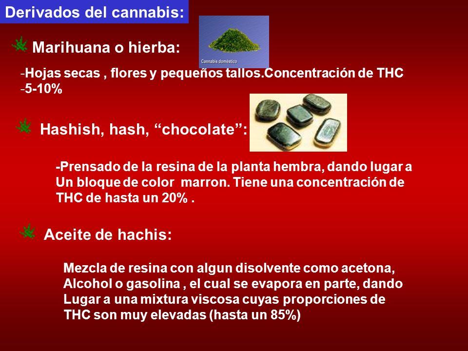 Derivados del cannabis: -Hojas secas, flores y pequeños tallos.Concentración de THC -5-10% Marihuana o hierba: Hashish, hash, chocolate: -Prensado de