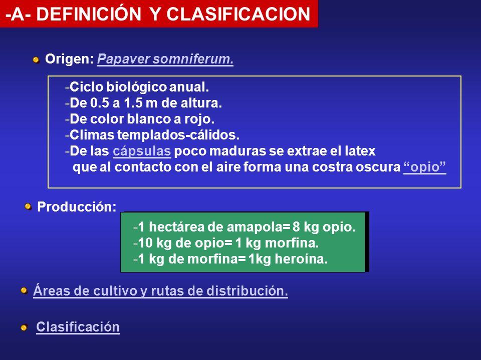 -A- DEFINICIÓN Y CLASIFICACION Origen: Papaver somniferum.Papaver somniferum. Áreas de cultivo y rutas de distribución. -Ciclo biológico anual. -De 0.