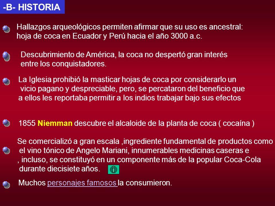 -B- HISTORIA Hallazgos arqueológicos permiten afirmar que su uso es ancestral: hoja de coca en Ecuador y Perú hacia el año 3000 a.c. Descubrimiento de