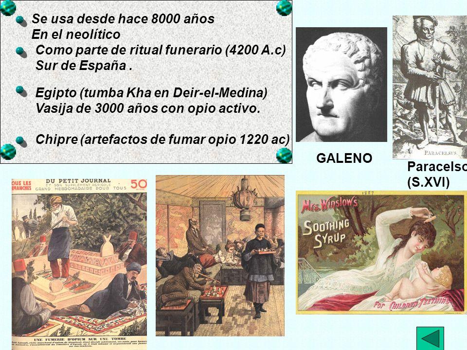 -A-Barbitúricos.-A- BARBITURICOS A.1. Historia. A.2.