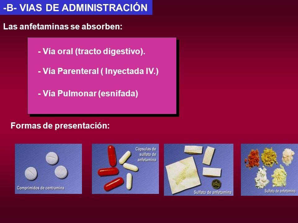 -B- VIAS DE ADMINISTRACIÓN Las anfetaminas se absorben: - Vía oral (tracto digestivo). - Vía Parenteral ( Inyectada IV.) - Vía Pulmonar (esnifada) For