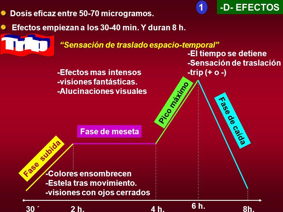 -D- EFECTOS Dosis eficaz entre 50-70 microgramos. Efectos empiezan a los 30-40 min. Y duran 8 h. 30 ´ Fase subida -Colores ensombrecen -Estela tras mo