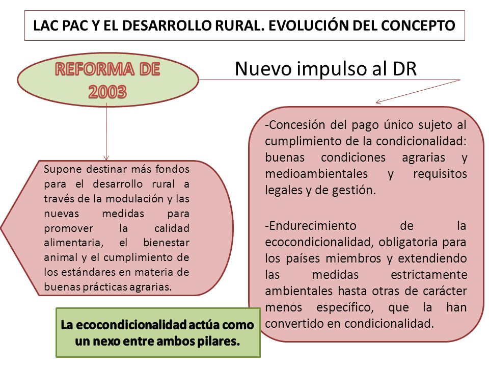 LAC PAC Y EL DESARROLLO RURAL. EVOLUCIÓN DEL CONCEPTO Nuevo impulso al DR -Concesión del pago único sujeto al cumplimiento de la condicionalidad: buen