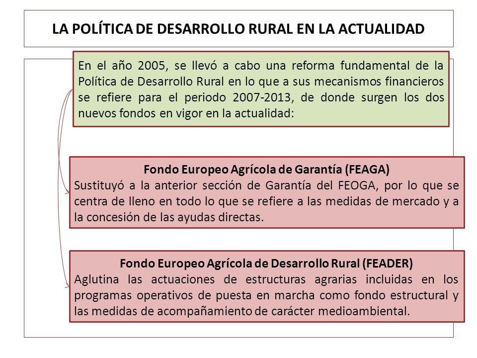 LA POLÍTICA DE DESARROLLO RURAL EN LA ACTUALIDAD En el año 2005, se llevó a cabo una reforma fundamental de la Política de Desarrollo Rural en lo que