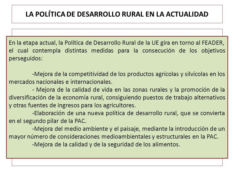 LA POLÍTICA DE DESARROLLO RURAL EN LA ACTUALIDAD En la etapa actual, la Política de Desarrollo Rural de la UE gira en torno al FEADER, el cual contemp