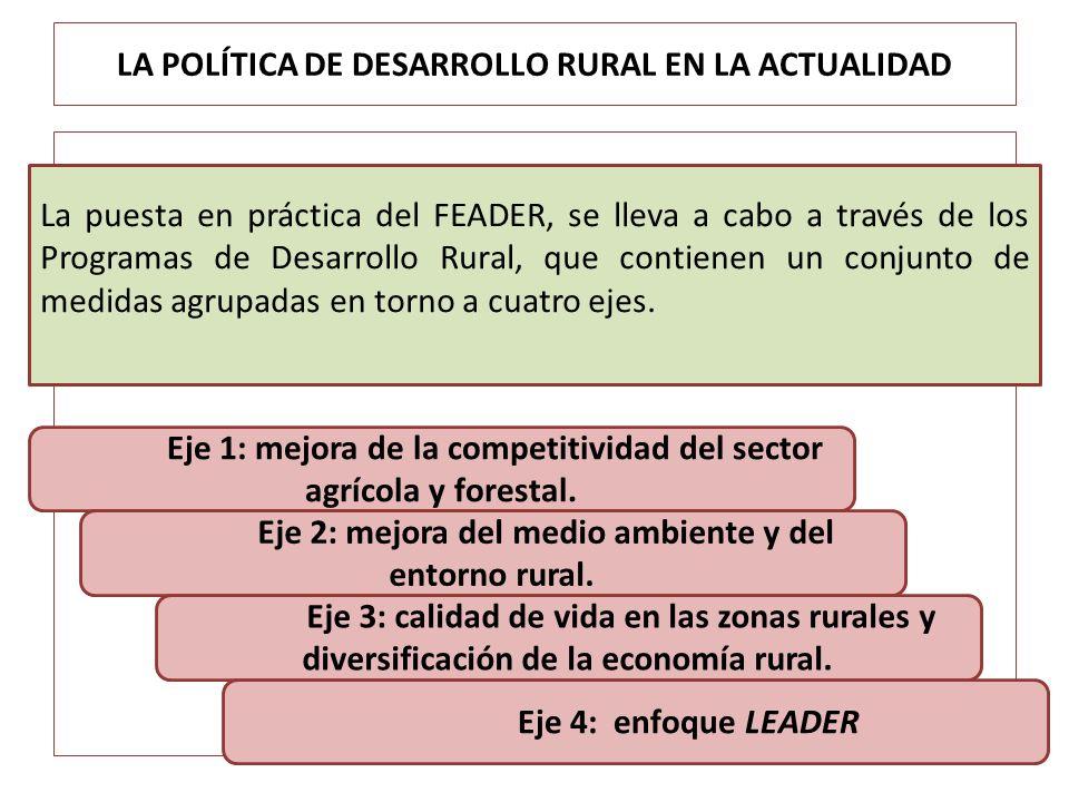 LA POLÍTICA DE DESARROLLO RURAL EN LA ACTUALIDAD La puesta en práctica del FEADER, se lleva a cabo a través de los Programas de Desarrollo Rural, que