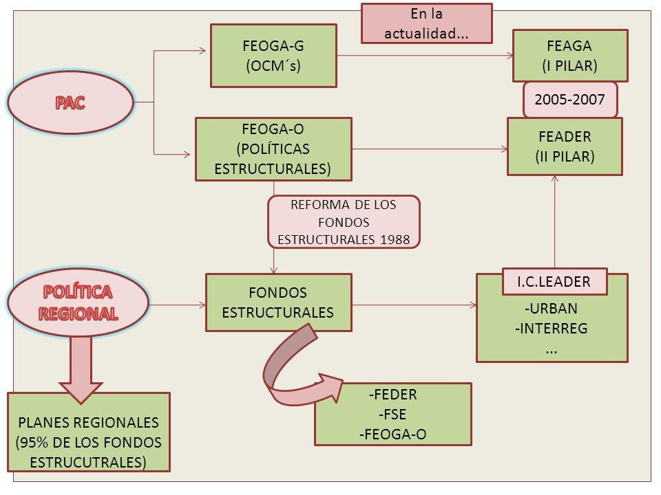 FEOGA-G (OCM´s) FEOGA-O (POLÍTICAS ESTRUCTURALES) FEADER (II PILAR) FEAGA (I PILAR) FONDOS ESTRUCTURALES -FEDER -FSE -FEOGA-O -URBAN -INTERREG... PLAN