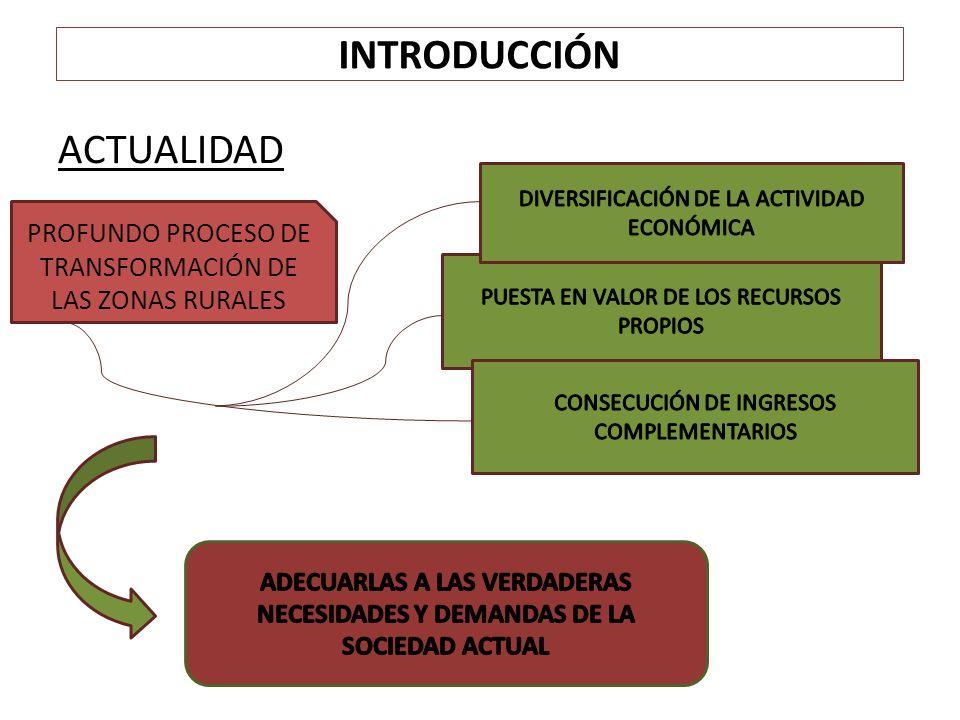 INTRODUCCIÓN El desarrollo rural ha estado ligado a la PAC desde sus orígenes, siendo así que se identifica con el denominado segundo pilar, que impulsa, desde el año 2000, múltiples acciones para mejorar las condiciones de vida de la población rural, la diversificación económica, la sostenibilidad medioambiental y la mejora de la competitividad de las explotaciones agrarias en el medio rural.