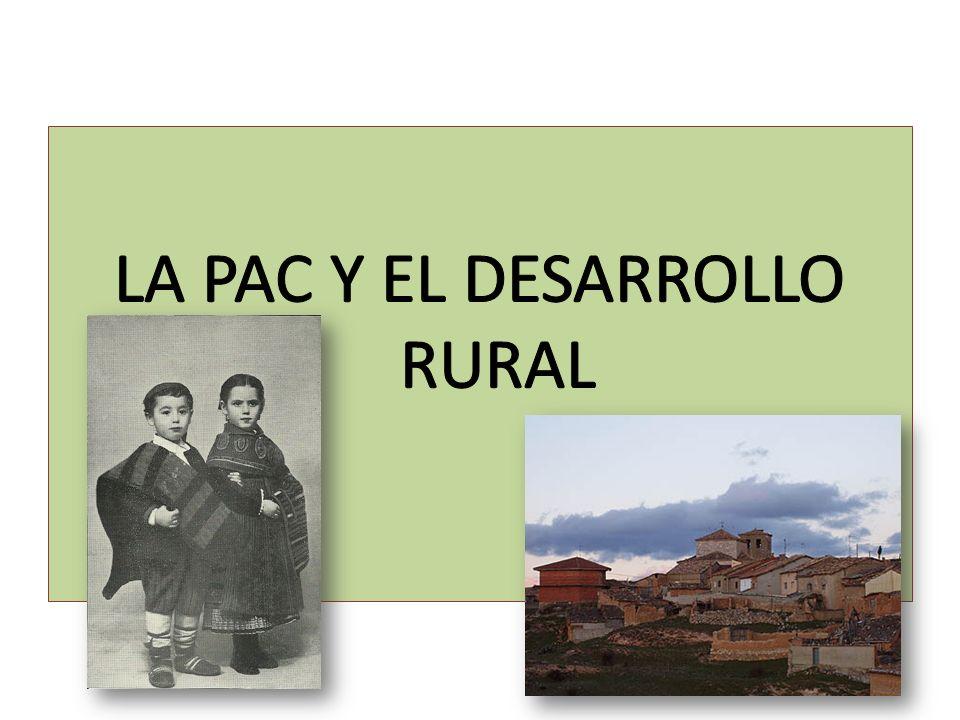 LA POLÍTICA DE DESARROLLO RURAL EN LA ACTUALIDAD En el año 2005, se llevó a cabo una reforma fundamental de la Política de Desarrollo Rural en lo que a sus mecanismos financieros se refiere para el periodo 2007-2013, de donde surgen los dos nuevos fondos en vigor en la actualidad: Fondo Europeo Agrícola de Garantía (FEAGA) Sustituyó a la anterior sección de Garantía del FEOGA, por lo que se centra de lleno en todo lo que se refiere a las medidas de mercado y a la concesión de las ayudas directas.