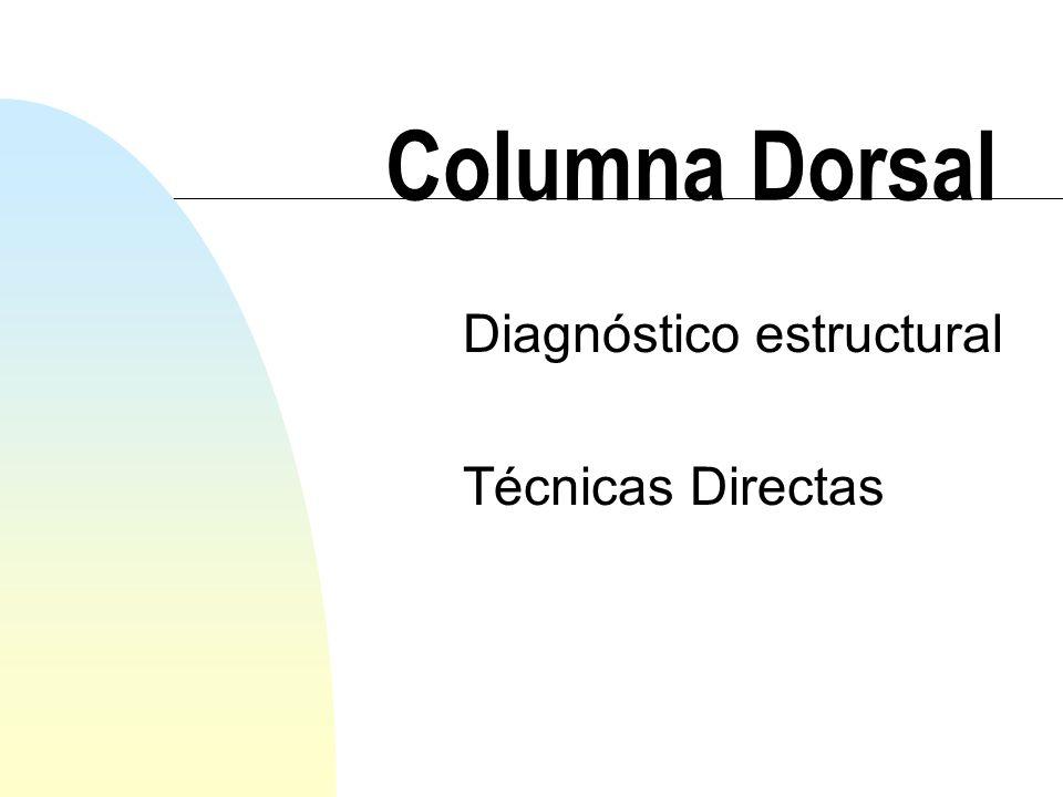 Columna Dorsal Diagnóstico estructural Técnicas Directas
