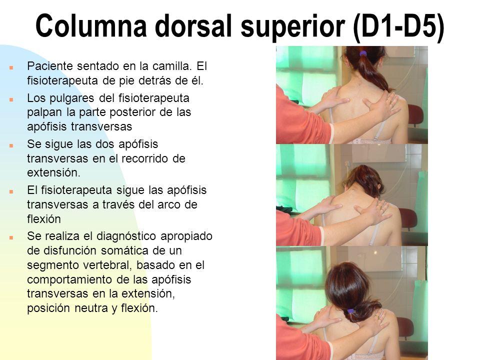 Columna dorsal superior (D1-D5) n Paciente sentado en la camilla. El fisioterapeuta de pie detrás de él. n Los pulgares del fisioterapeuta palpan la p