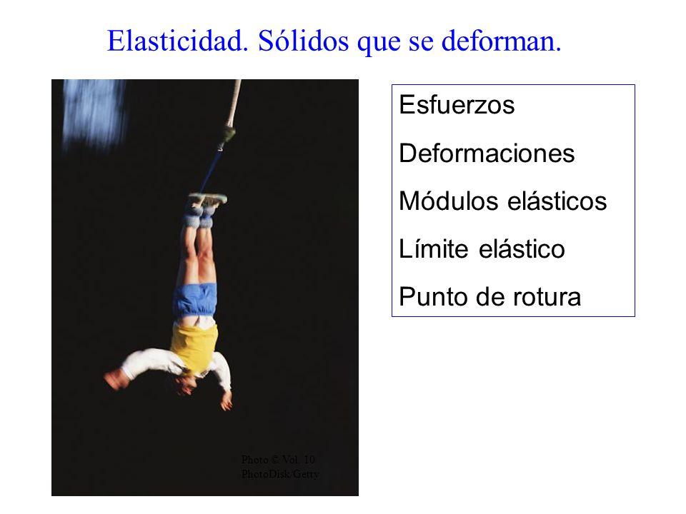 Elasticidad.Sólidos que se deforman. Photo © Vol.