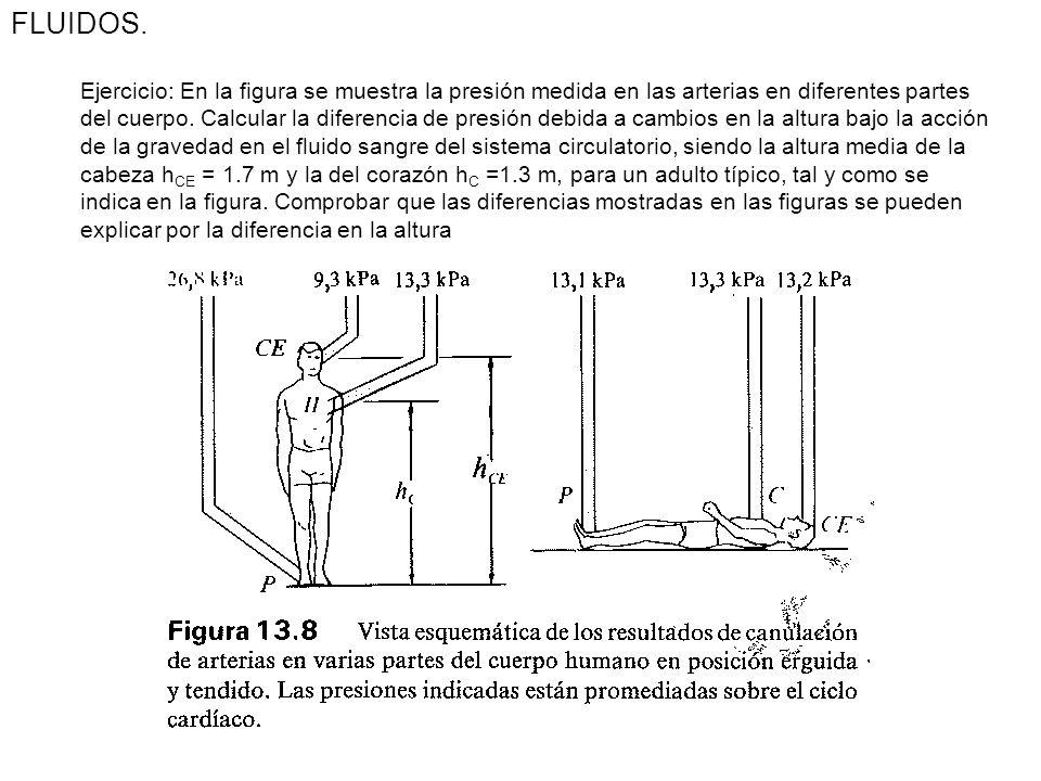 Ecuación de la Estática de fluidos. O cambio de la presión de un fluido en reposo con la altura en el seno de un campo gravitacional FLUIDOS. Presión.