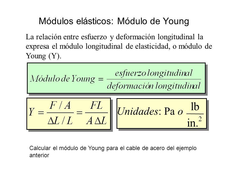 Módulos elásticos: Módulo de Young La relación entre esfuerzo y deformación longitudinal la expresa el módulo longitudinal de elasticidad, o módulo de Young (Y).