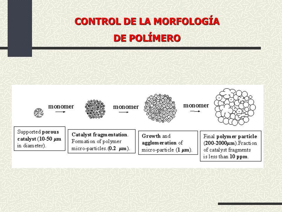 CONTROL DE LA MORFOLOGÍA DE POLÍMERO