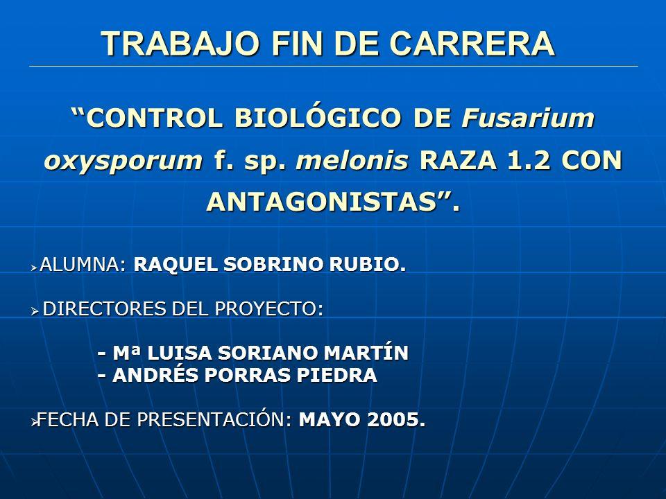 TRABAJO FIN DE CARRERA TRABAJO FIN DE CARRERA CONTROL BIOLÓGICO DE Fusarium oxysporum f. sp. melonis RAZA 1.2 CON ANTAGONISTAS. ALUMNA: RAQUEL SOBRINO
