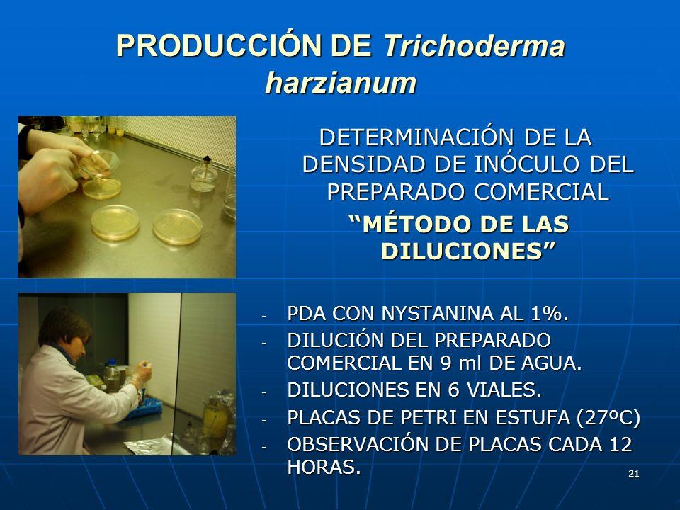 21 PRODUCCIÓN DE Trichoderma harzianum DETERMINACIÓN DE LA DENSIDAD DE INÓCULO DEL PREPARADO COMERCIAL MÉTODO DE LAS DILUCIONES MÉTODO DE LAS DILUCION