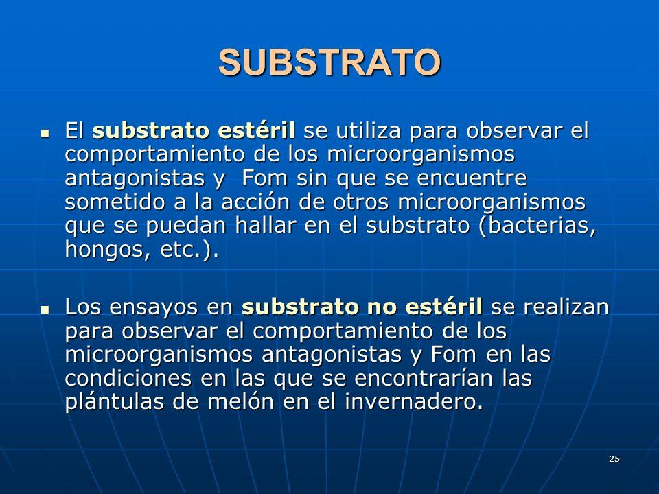 25 SUBSTRATO El substrato estéril se utiliza para observar el comportamiento de los microorganismos antagonistas y Fom sin que se encuentre sometido a