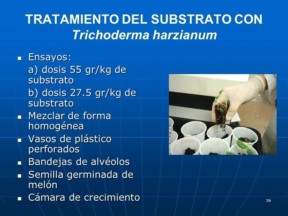 26 TRATAMIENTO DEL SUBSTRATO CON Trichoderma harzianum Ensayos: Ensayos: a) dosis 55 gr/kg de substrato b) dosis 27.5 gr/kg de substrato Mezclar de fo