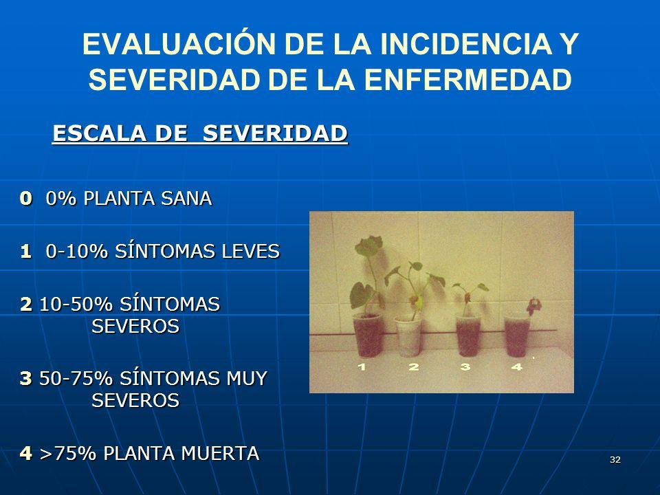 32 EVALUACIÓN DE LA INCIDENCIA Y SEVERIDAD DE LA ENFERMEDAD ESCALA DE SEVERIDAD 0 0% PLANTA SANA 1 0-10% SÍNTOMAS LEVES 2 10-50% SÍNTOMAS SEVEROS 3 50