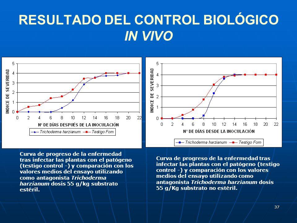 37 RESULTADO DEL CONTROL BIOLÓGICO IN VIVO Curva de progreso de la enfermedad tras infectar las plantas con el patógeno (testigo control -) y comparac