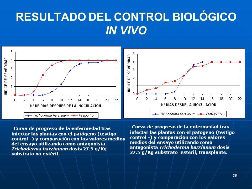 39 RESULTADO DEL CONTROL BIOLÓGICO IN VIVO Curva de progreso de la enfermedad tras infectar las plantas con el patógeno (testigo control -) y comparac