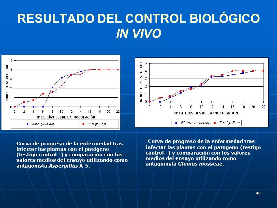 40 RESULTADO DEL CONTROL BIOLÓGICO IN VIVO Curva de progreso de la enfermedad tras infectar las plantas con el patógeno (testigo control -) y comparac