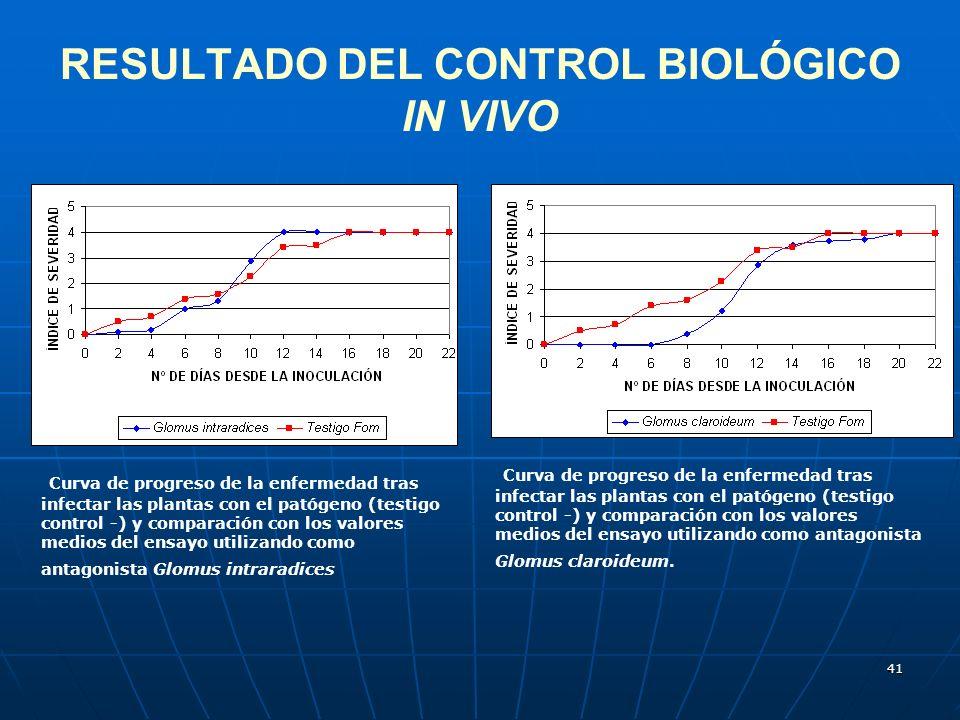 41 RESULTADO DEL CONTROL BIOLÓGICO IN VIVO Curva de progreso de la enfermedad tras infectar las plantas con el patógeno (testigo control -) y comparac